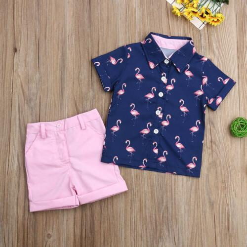 Toddler Clothes Outfits Flamingo Tops Pants